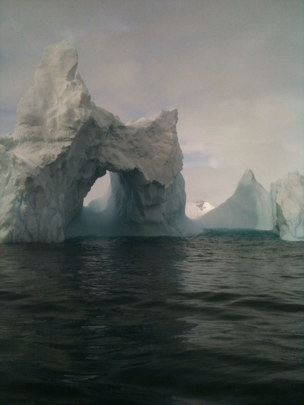 Our highly rated Antarctica app